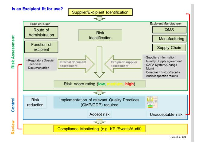 Establishing a formalized risk assessment for excipients figure 1 excipient risk assessment process pronofoot35fo Images