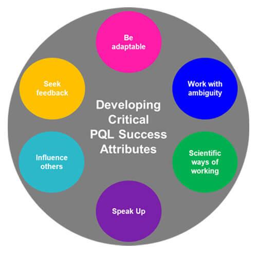 Developing Critical PQL Success Attributes