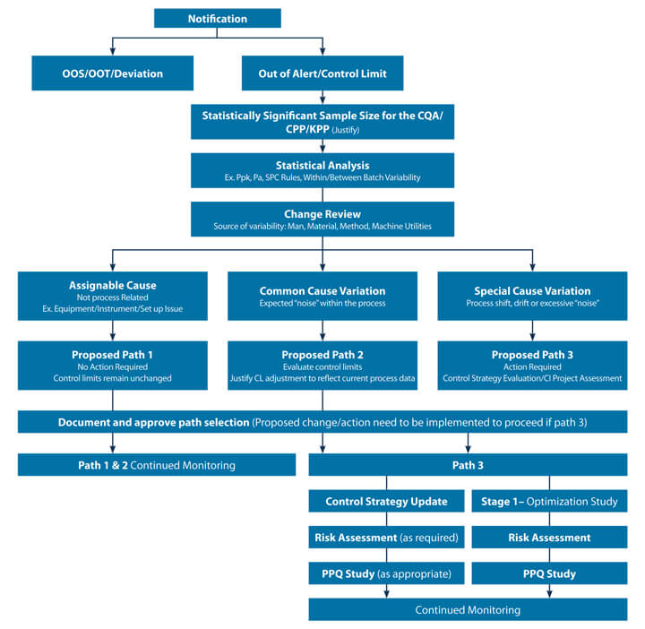 A decision tree showing 3 levels of pathways for CPV data